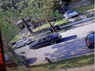Suspects Sought in a Homicide: 800 Block of Xenia Street, Southeast