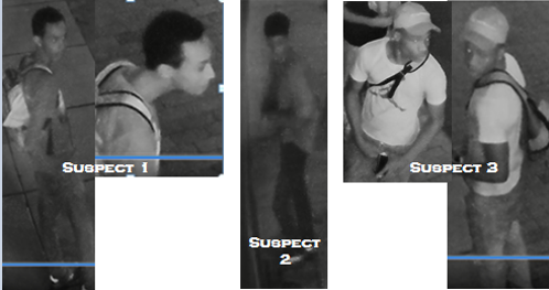 Suspects Sought in a Robbery (Pick Pocket) Offense: 900 Block of 5th Street, Northwest
