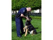 K-9 Handler Giannini - Grass With Dog