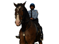 Officer Roderick Torrence - Horse Mounted Unit